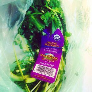 10 Reasons to Consume Cilantro Daily + Recipe
